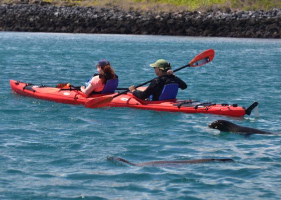 kayaking playa ochoa galapagos