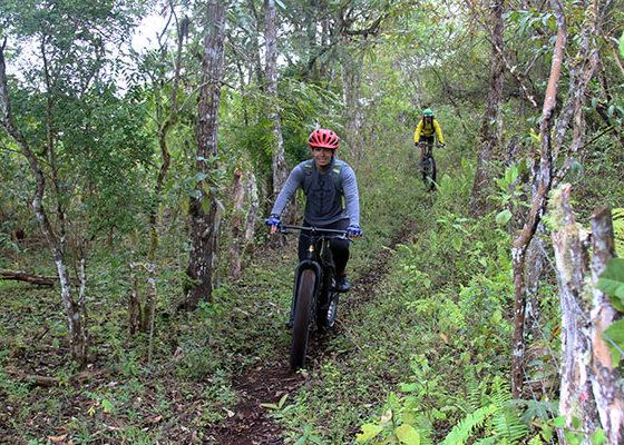 galapagos isabela biking